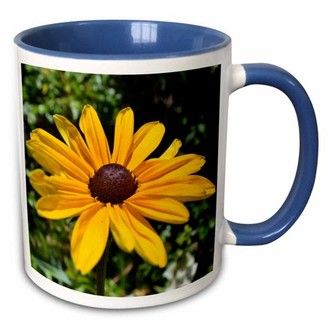 3dRose Out in Nature- Black Eyed Susan Flower- Photography - Two Tone Blue Mug, 11-ounce