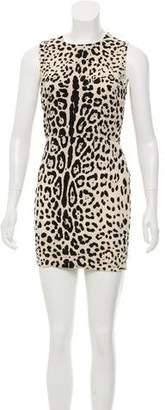 Dolce & Gabbana Animal Print Sheath Dress