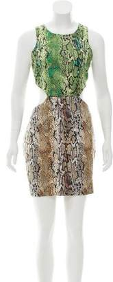 Naven Animal Print Cutout Dress w/ Tags