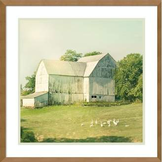 August Grove 'Farm Morning III Square (Barn)' Framed Photographic Print