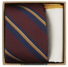 The Tie Bar Striped Tie and Pocket Square Set
