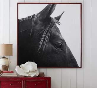 Pottery Barn Dark Horse in Profile Framed Prints by Jennifer Meyers