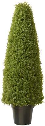 Alcott Hill Eyre Boxwood Tree in Pot