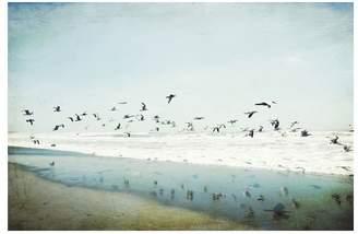 Pottery Barn Birds Reflected Framed Print By Lupen Grainne