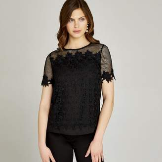 Apricot Black Mesh And Lace Floral Edge Top