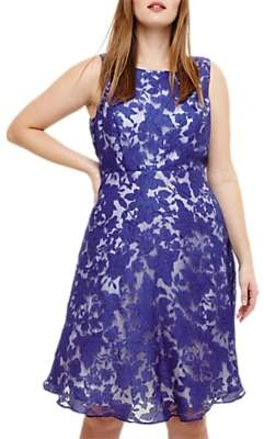 Studio 8 Kew Sleeveless Dress, Cobalt/Ivory