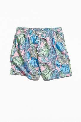 Boardies Palmtopia Mid-Length Swim Short