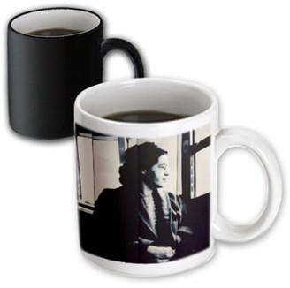 Walter 3drose 3dRose Alabama, Montgomery, Rosa Parks Museum - US01 WBI0226 Bibikow - Magic Transforming Mug, 11-ounce