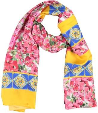 Dolce & Gabbana Scarves