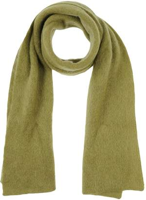Alberta Ferretti Oblong scarves