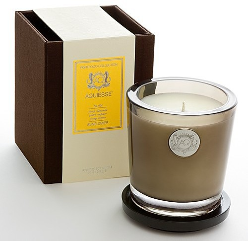 Large Soy Candle Collection by Aquiesse
