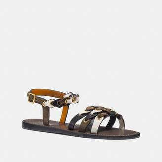 Coach Sandal With Link