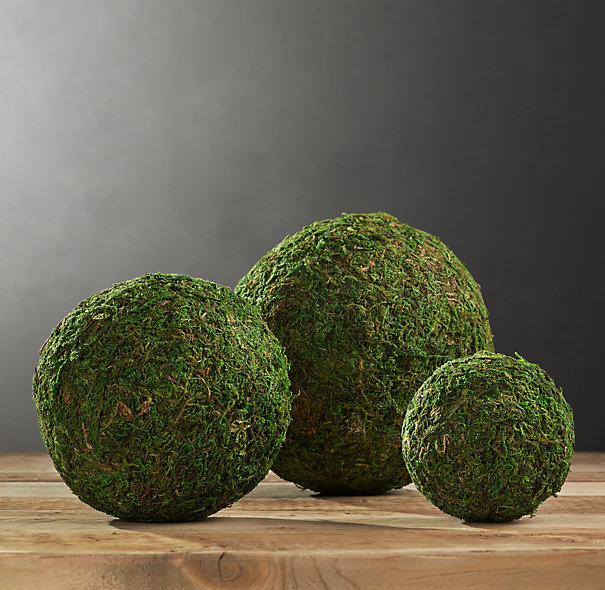 Preserved Moss Spheres