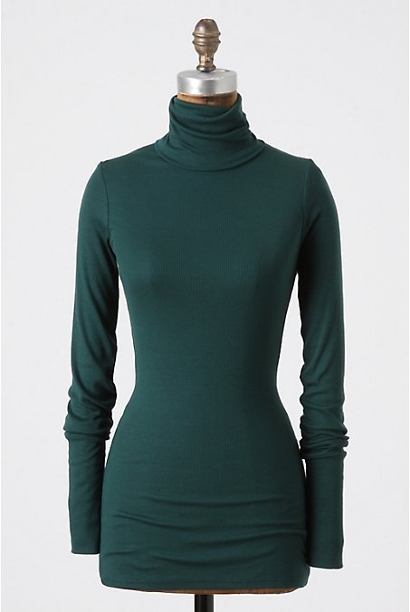 Pinnacle Jersey Turtleneck