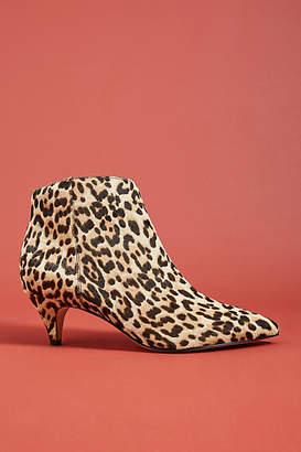 Sam Edelman Kinzey Leopard Booties
