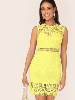 Shein Zip Back Form Fitted Lace Dress