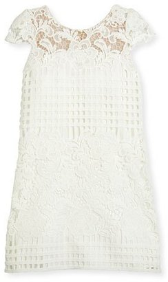 Zoe Cap-Sleeve Venetian Lace Shift Dress, White, Size 7-16 $190 thestylecure.com