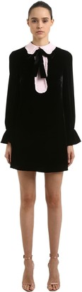 VIVETTA VELVET MINI DRESS W/ CONTRASTING COLLAR