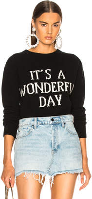Alberta Ferretti It's A Wonderful Day Crewneck Sweater