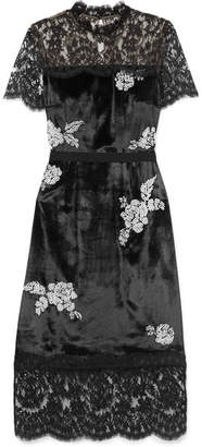 Erdem Keni Lace-paneled Silk-faille Trimmed Faux Pearl-embellished Velvet Dress - Black