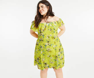 Oasis Curve Daisy Skater Dress