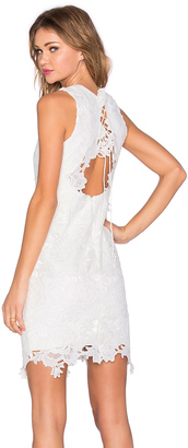 Bardot Rosette Lace Dress $164 thestylecure.com