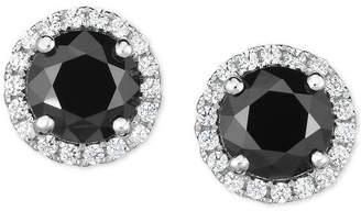 Arabella Zirconia Halo Stud Earrings in Sterling Silver