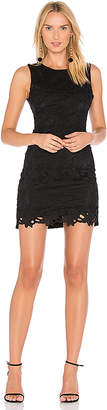 Line & Dot Ganen Lace Dress in Black $99 thestylecure.com