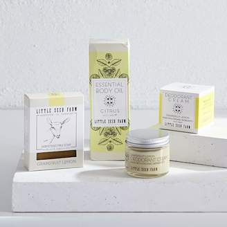 west elm Little Seed Farm Daily Essentials Gift Set of 3