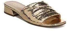Franco Sarto Frisco Metallic Leather Slides