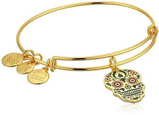 Alex and Ani Color Infusion