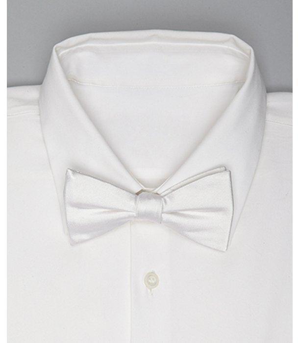 Countess Mara white solid satin bow tie