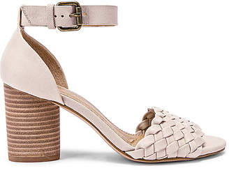 Splendid Taro Sandal