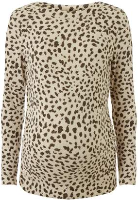 Dorothy Perkins Womens **Maternity Multi Coloured Leopard Print Brushed Sweat Top
