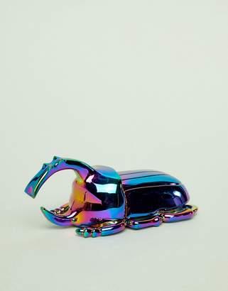Doiy beetle bottle opener