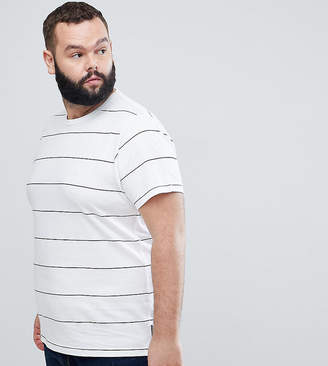 French Connection PLUS Thin Stripe T-Shirt