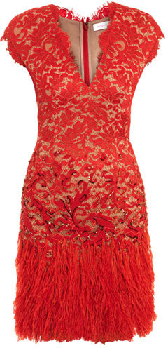 Matthew Williamson Winter garden lace and feather dress