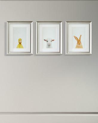 Paragon Decors Framed Baby Animal Photography Print Framed Art