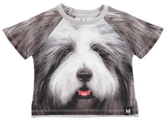 Molo Even Hairy Dog Short-Sleeve T-Shirt, Size 6-24 Months
