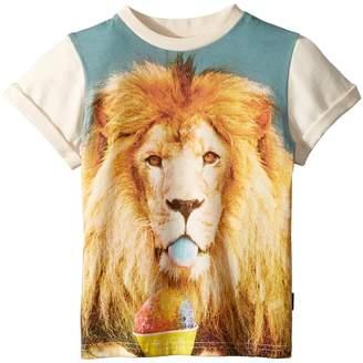 Rock Your Baby Summertime Lion Short Sleeve Tee Boy's T Shirt
