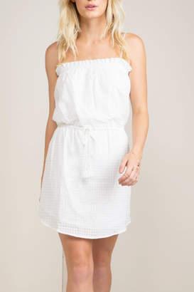 Greylin Dakota Mini Dress