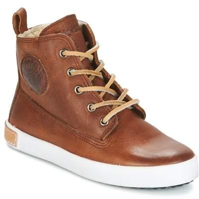 CK05 Brown