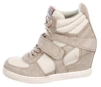 Ash Canvas High-Top Sneakers