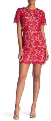 Dress the Population Anna Crochet Lace Sheath Dress