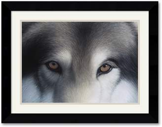 "Hunter Amanti Art ""Eyes of the Gray Wolf"" Framed Art Print by Charles Alexander"