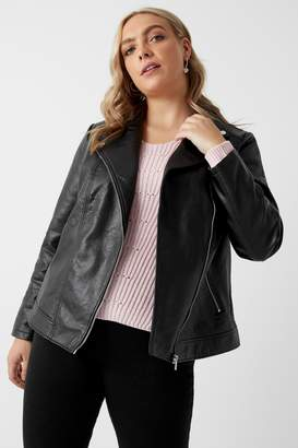 Next Womens Dorothy Perkins Curve Faux Leather Biker Jacket