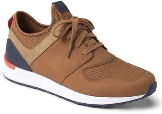 Gap Retro Sneakers
