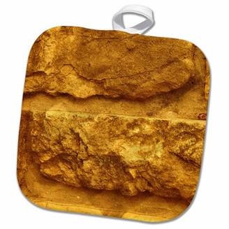 3dRose Gold Brick - Pot Holder, 8 by 8-inch