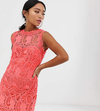 Paper Dolls Petite high neck lace pencil dress in soft coral