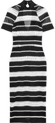 Rebecca Vallance Testa Open-Back Striped Guipure Lace Midi Dress